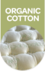 Organic Cotton-2