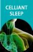 Selo Celliant Sleep-2